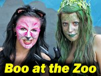 Boo at the Zoo, Gainesville, Florida